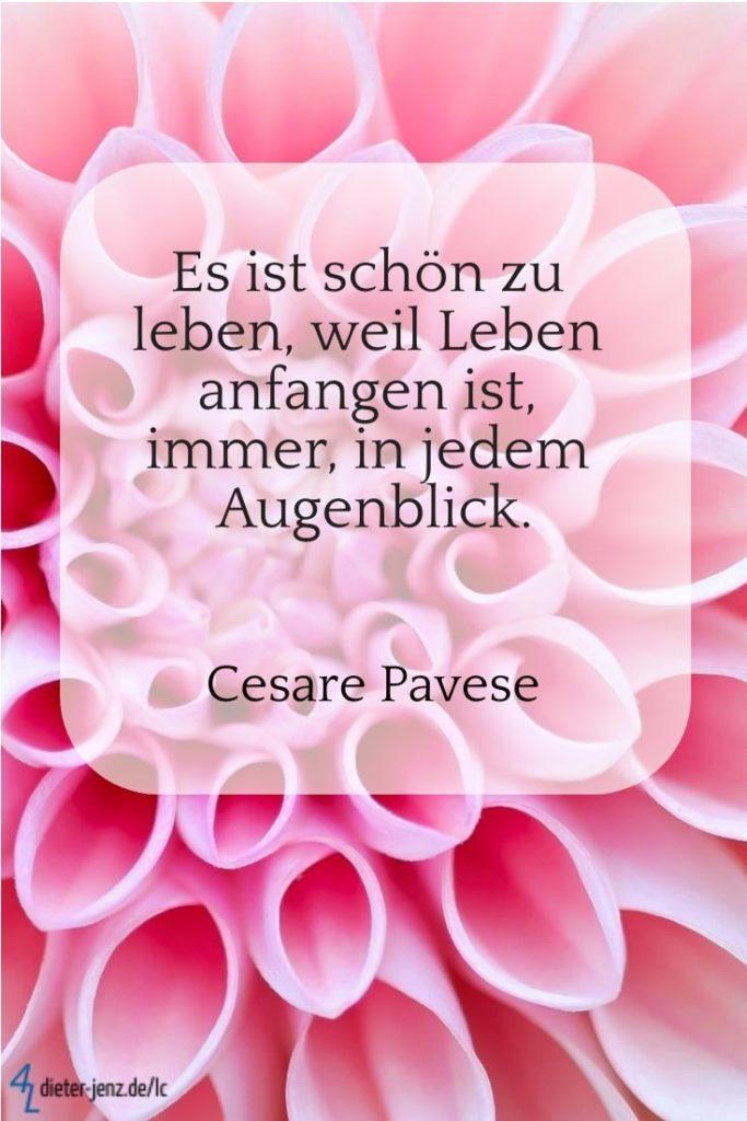 Es ist schön zu leben, C. Pavese - Gestaltung: privat
