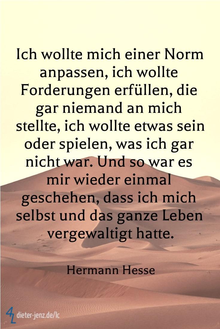 Ich wollte mich einer Norm anpassen, H. Hesse - Gestaltung: privat